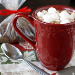 Homemade Gourmet Hot Chocolate Mix