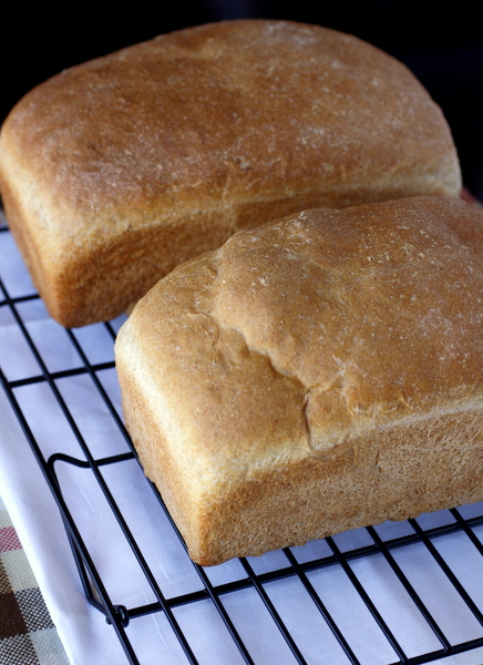 French Sandwich Bread
