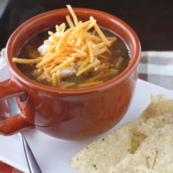 Salsa Chicken Chili