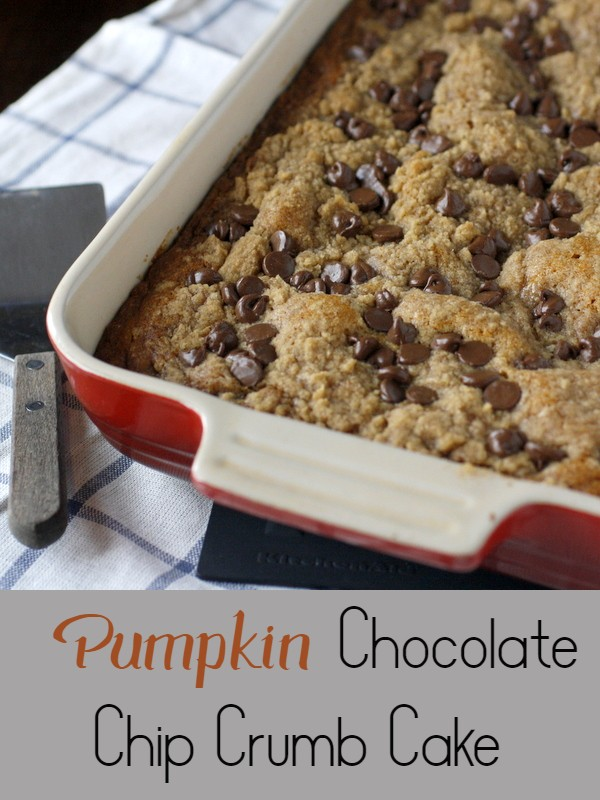 This pumpkin chocolate chip crumb cake is simple and delicious - a fall flavored snack cake chock full of chocolate chips and topped with a cinnamon crumb topping!